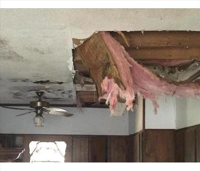 Pensacola Mold and Water Damage