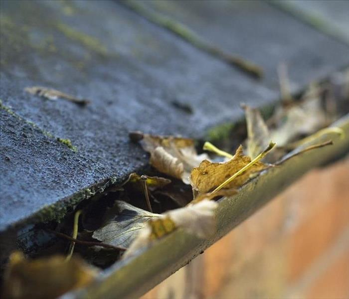Water Damage Water Damage Inside Your Walls from Clogged Gutters in Your Pensacola Residence
