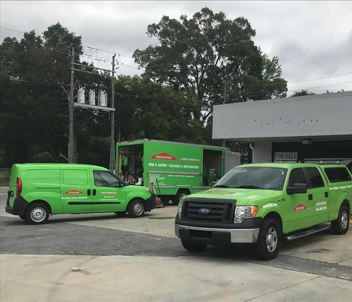 Mold Remediation Who Want Mold Growing in Their Pensacola Properties? SERVPRO Technicians Don't!