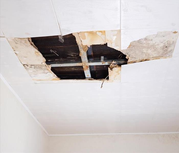 Water Damage Identify Water Damage Before It Wrecks Your Home: SERVPRO Tips and Hints